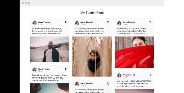 Tumblr Feed Widget für Webseite