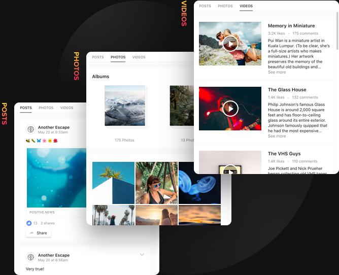 3 tipos de contenido, un solo feed