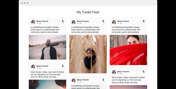 Flux Tumblr <br> pour site Web