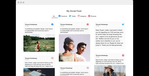 Social Media Feed widget <br /> per il sito web