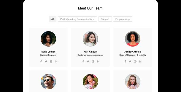 Plugin Team Showcase <br /> per il sito web