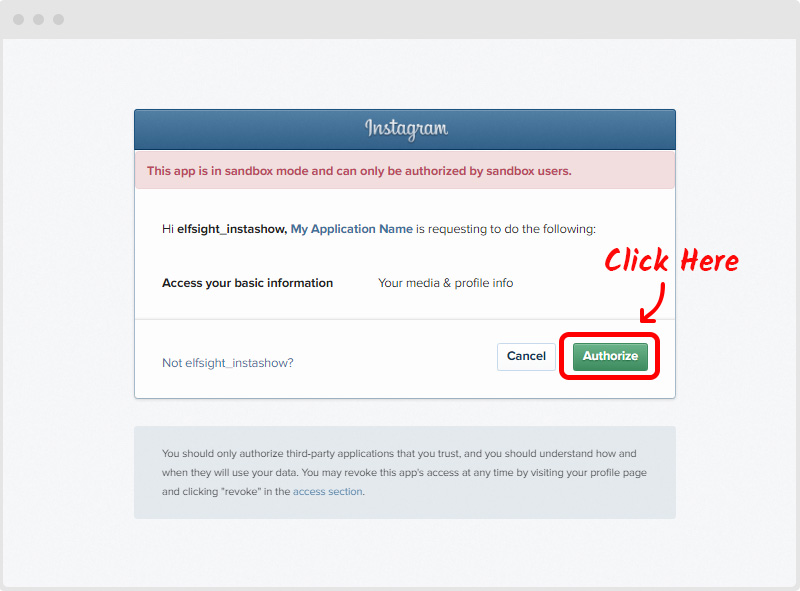 Instagram Sandbox Authorization