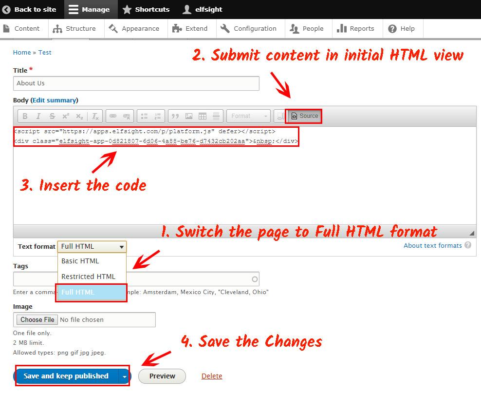 Paste the YouTube module code