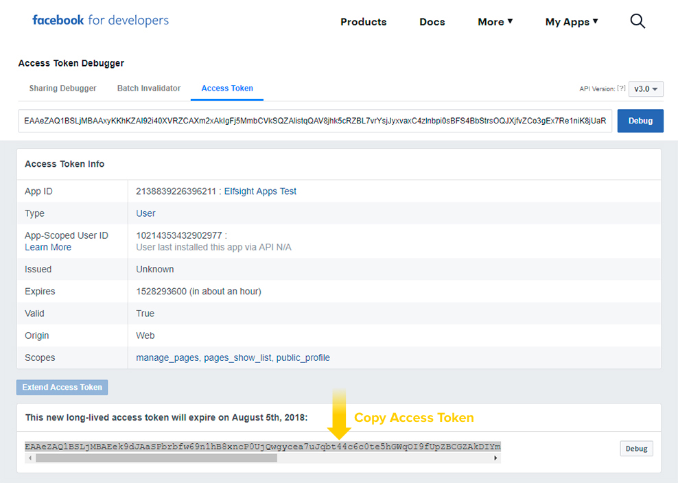 Copy Facebook Access Token