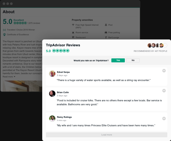 Your TripAdvisor widget on your website