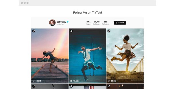 TikTok Video Feed <br>widget for website