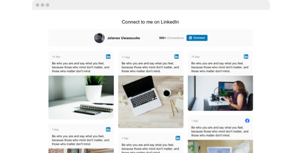 LinkedIn Feed <br>widget for website