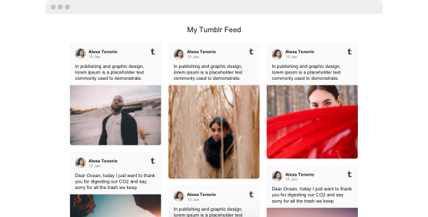 Tumblr Feed widget<br>for website
