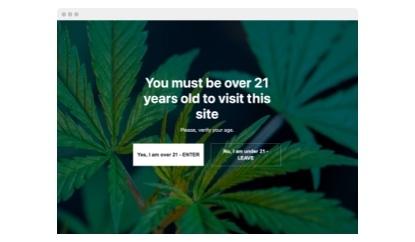 Marijuana Age Verification template